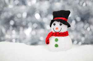 christmas-snow-snowman-decoration-40541.jpeg